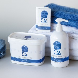 Bright Beginnings Fundraiser - Scentsy - Laundry Love