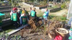 Preschool visit the eco garden